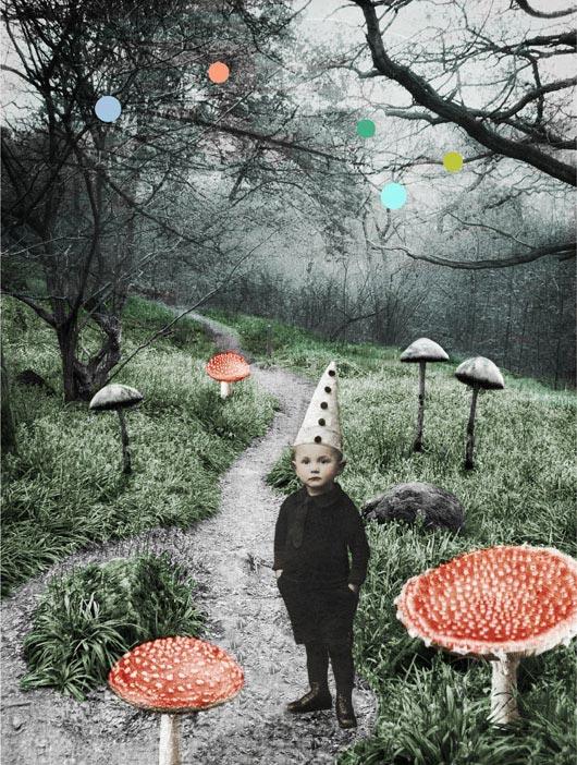 Med tryllehatt i drømmeskogen