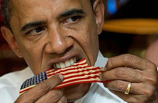Obama egentlig svensk?